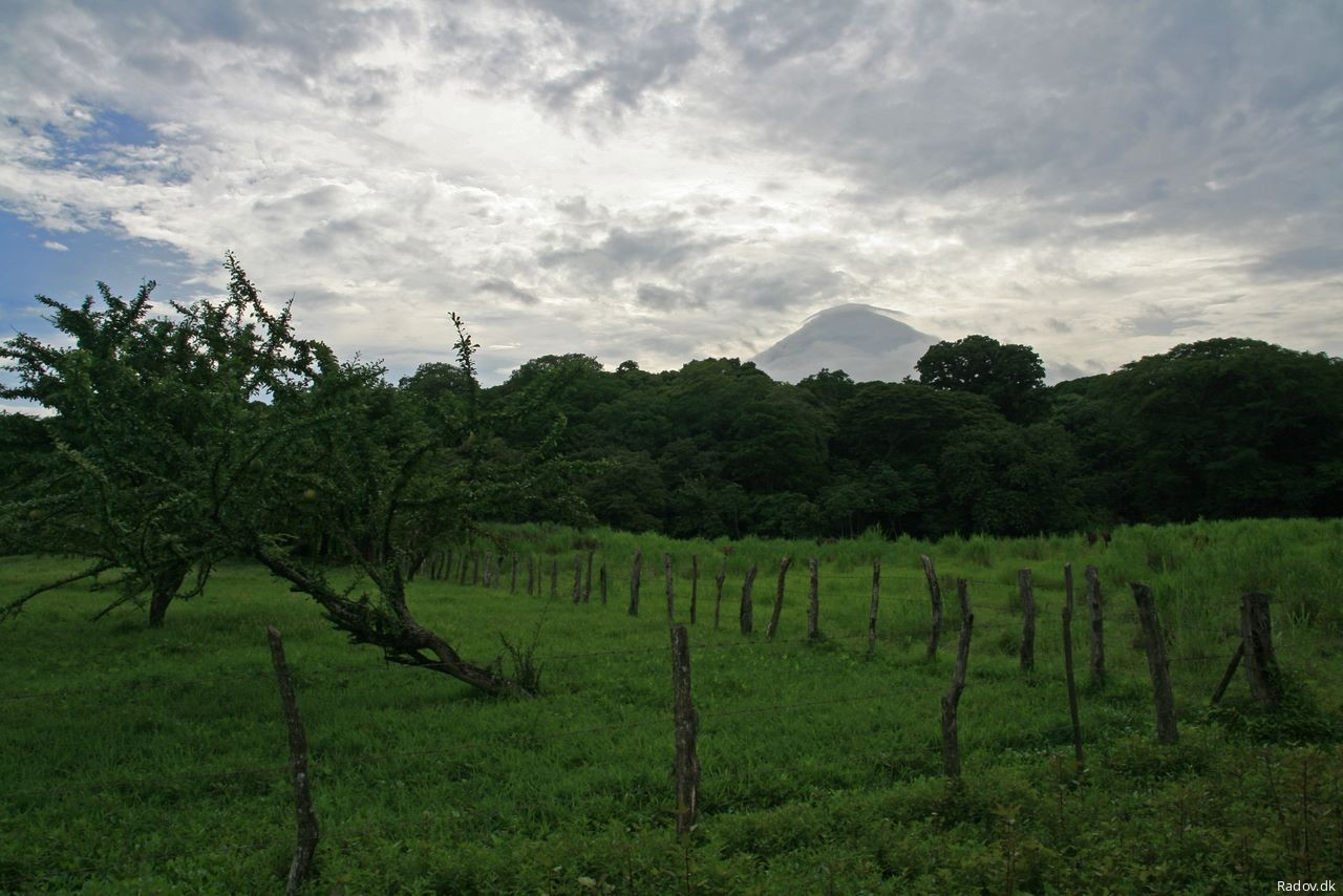 Meadow with Conceptión barely visible